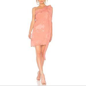 Pink Elliatt Maria Dress Size XS